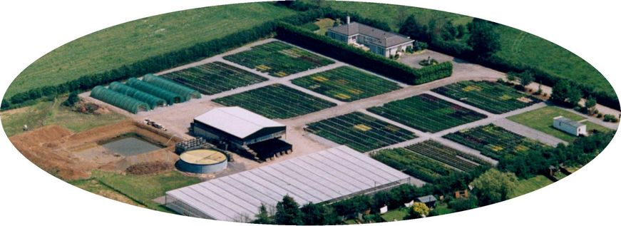 Poulshot Nurseries.Wiltshire Wholesale Nursery-Wide Range Of Hardy Nursery Stock